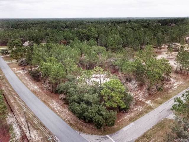 4519 W Tomahawk Drive, Beverly Hills, FL 34465 (MLS #788907) :: Plantation Realty Inc.