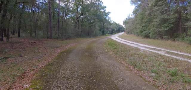 3592 E Lee Drive, Inverness, FL 34453 (MLS #788920) :: Plantation Realty Inc.