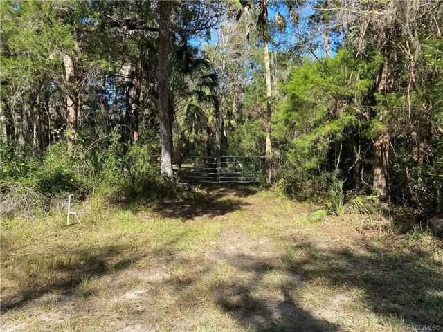 10935 W Grybek Drive, Homosassa, FL 34446 (MLS #788945) :: Pristine Properties