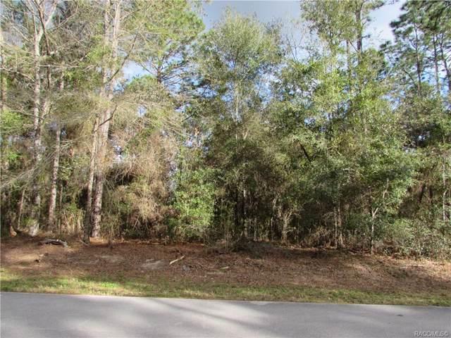 8099 N Primrose Drive, Citrus Springs, FL 34434 (MLS #788992) :: Plantation Realty Inc.