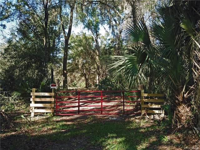 5828 N Tallahassee Road, Crystal River, FL 34428 (MLS #789010) :: Pristine Properties