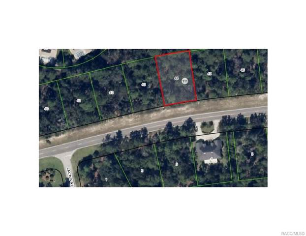 6027 W Oak Park Boulevard, Homosassa, FL 34446 (MLS #789030) :: Plantation Realty Inc.