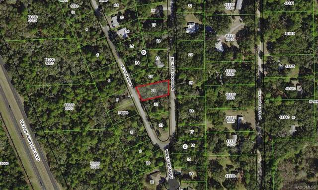 5640 N Brookgreen Drive, Crystal River, FL 34428 (MLS #789035) :: Plantation Realty Inc.