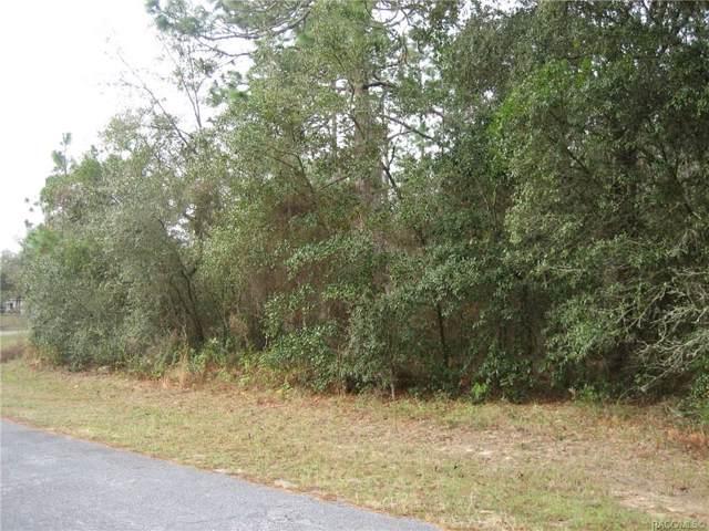 8636 N Trojan Drive, Citrus Springs, FL 34434 (MLS #789039) :: 54 Realty