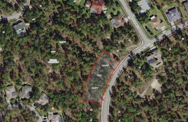 19 Candytuft Court, Homosassa, FL 34446 (MLS #789044) :: Pristine Properties
