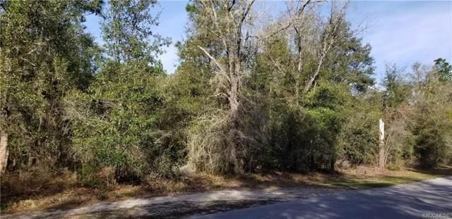 10208 N Sun City Terrace, Dunnellon, FL 34433 (MLS #789080) :: Plantation Realty Inc.