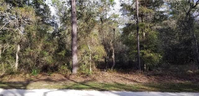 7453 W Broadway Street, Dunnellon, FL 34433 (MLS #789081) :: Pristine Properties