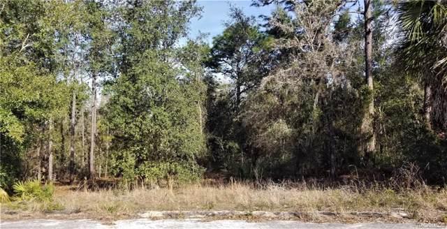 6115 W Caruso Court, Dunnellon, FL 34433 (MLS #789083) :: Pristine Properties