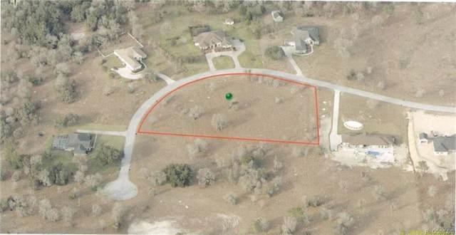 1550 E Ridgeline Path, Inverness, FL 34453 (MLS #789089) :: Plantation Realty Inc.