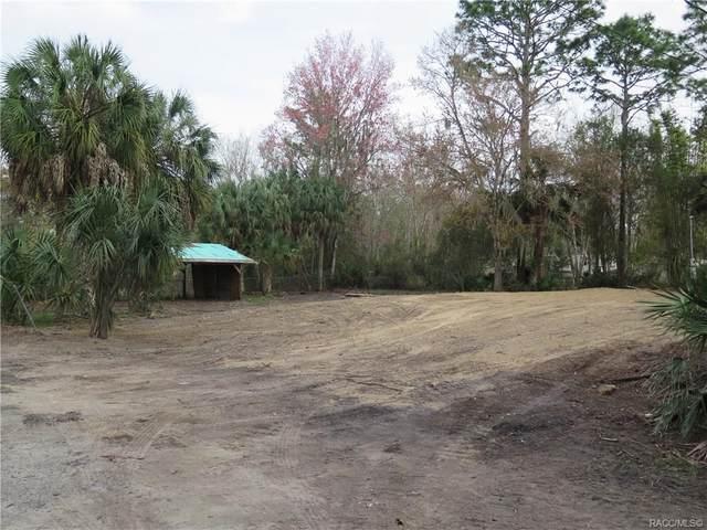 8160 W Tracy Point, Homosassa, FL 34448 (MLS #789097) :: Plantation Realty Inc.