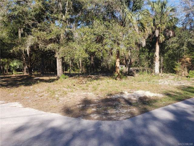 6317 W Mango Lane, Crystal River, FL 34429 (MLS #789103) :: Plantation Realty Inc.