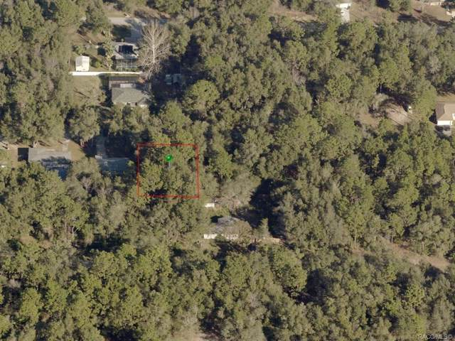 3990 E Walker Street, Inverness, FL 34453 (MLS #789106) :: Plantation Realty Inc.