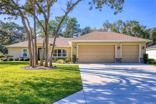7 Sycamore Court E, Homosassa, FL 34446 (MLS #789111) :: Plantation Realty Inc.