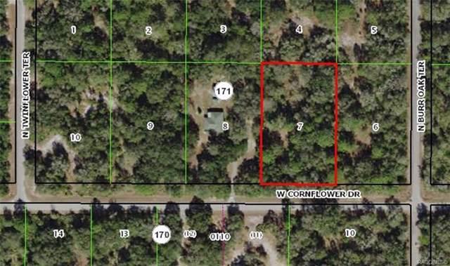 12675 W Cornflower Drive, Crystal River, FL 34428 (MLS #789130) :: Pristine Properties