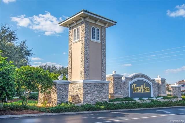239 W Mickey Mantle Path, Hernando, FL 34442 (MLS #789163) :: Plantation Realty Inc.