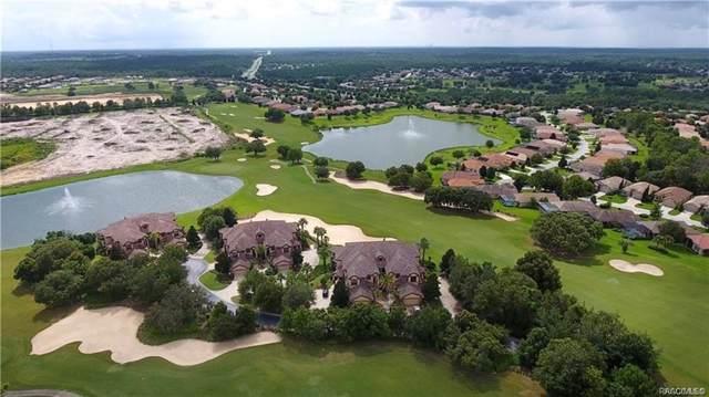 1125 W Pointe Vista Path B-3, Hernando, FL 34442 (MLS #789169) :: Plantation Realty Inc.
