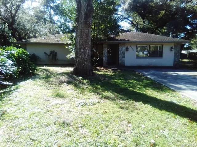 5208 E Tangelo Lane, Inverness, FL 34453 (MLS #789191) :: Pristine Properties