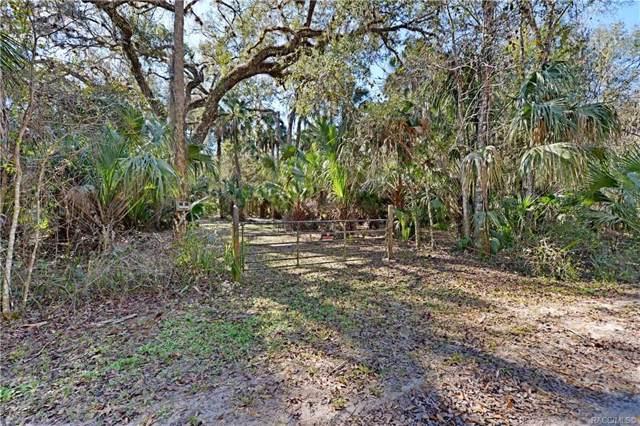 13254 E Shawnee Trail, Inverness, FL 34450 (MLS #789234) :: 54 Realty
