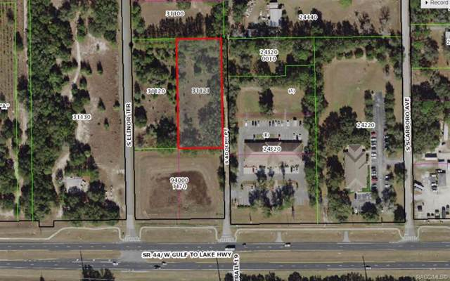 650 S Adolph Point, Lecanto, FL 34461 (MLS #789255) :: 54 Realty