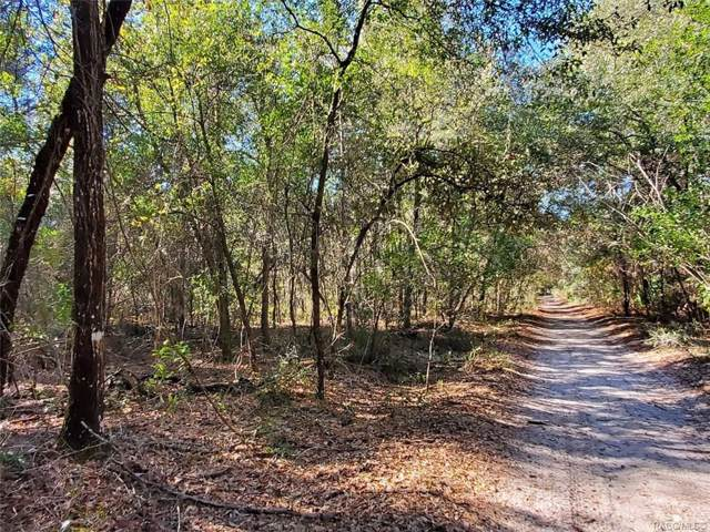 7252 W Contentment Lane, Dunnellon, FL 34433 (MLS #789260) :: Plantation Realty Inc.