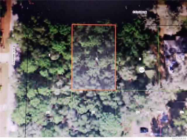 5956 E Elgin Lane, Inverness, FL 34452 (MLS #789305) :: Plantation Realty Inc.