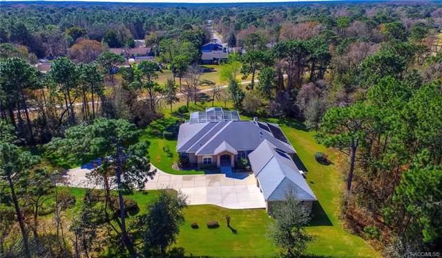 32 Seagrape Street, Homosassa, FL 34446 (MLS #789321) :: Plantation Realty Inc.