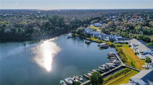 11086 W Cove Harbor Drive, Crystal River, FL 34428 (MLS #789390) :: Plantation Realty Inc.