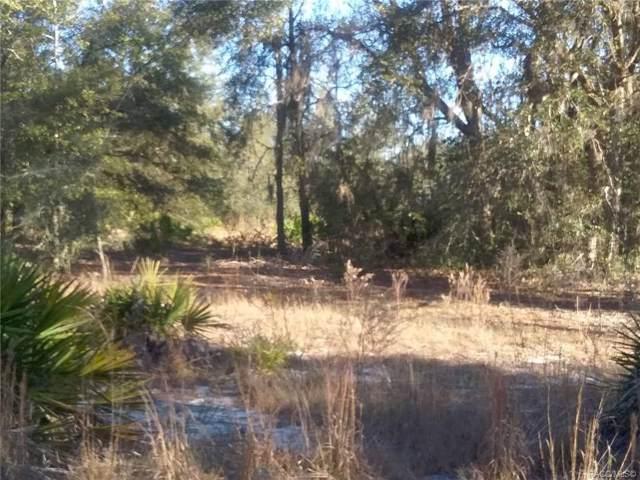 Lot 12 SW South Hills Court, Dunnellon, FL 34431 (MLS #789473) :: Plantation Realty Inc.