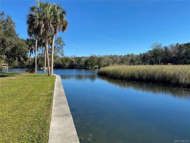 1019 N Kings Circle Point, Crystal River, FL 34429 (MLS #789496) :: Plantation Realty Inc.