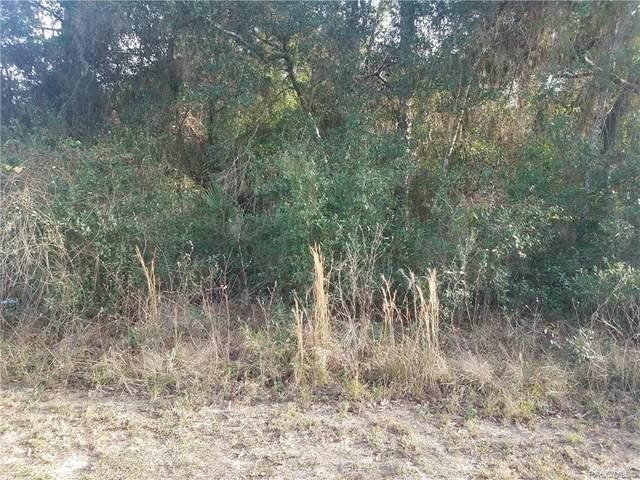 1309 Eden Drive, Inverness, FL 34450 (MLS #789529) :: Plantation Realty Inc.