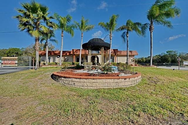 8275 W Bradshaw Street, Homosassa, FL 34448 (MLS #789535) :: Plantation Realty Inc.