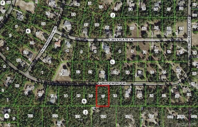 1634 E Tradewind Drive, Hernando, FL 34442 (MLS #789583) :: Plantation Realty Inc.