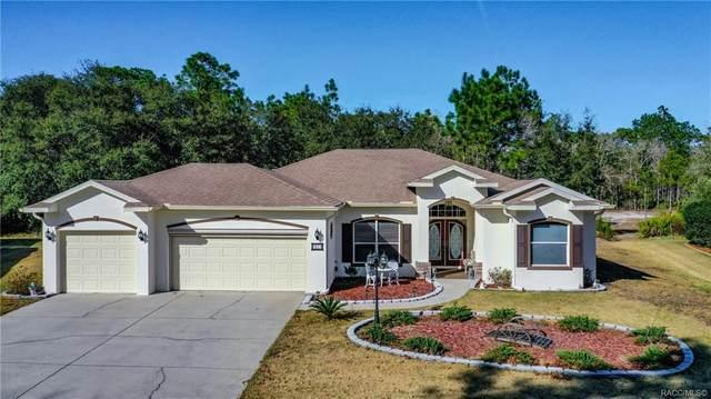 21 Stokesia Court, Homosassa, FL 34446 (MLS #789589) :: Pristine Properties