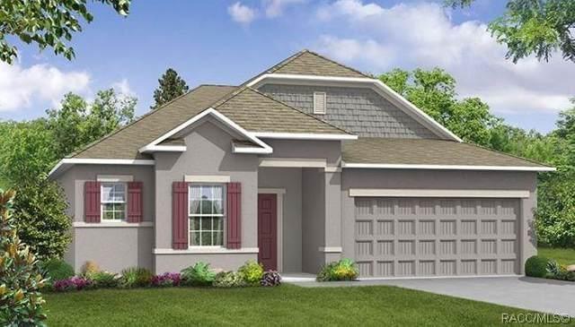 97 Linder Drive, Homosassa, FL 34446 (MLS #789604) :: Pristine Properties