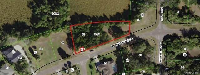11895 W Timberlaine Drive, Homosassa, FL 34448 (MLS #789618) :: Plantation Realty Inc.