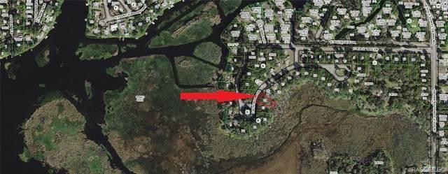 9350 E Mistwood Drive, Inverness, FL 34450 (MLS #789624) :: Plantation Realty Inc.