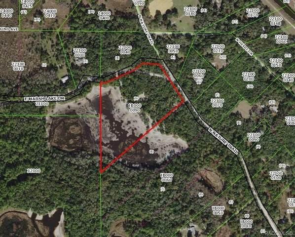 5440 E Marsh Lake Drive, Hernando, FL 34442 (MLS #789645) :: Pristine Properties
