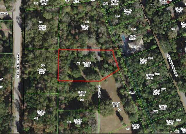 392 N Staff Point, Inverness, FL 34450 (MLS #789662) :: Plantation Realty Inc.
