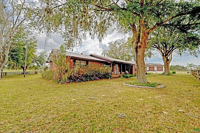 4540 W Woodlawn Street, Dunnellon, FL 34433 (MLS #789668) :: Plantation Realty Inc.