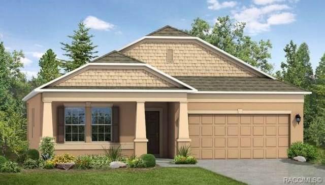 19 Salvia Court, Homosassa, FL 34446 (MLS #789787) :: Plantation Realty Inc.