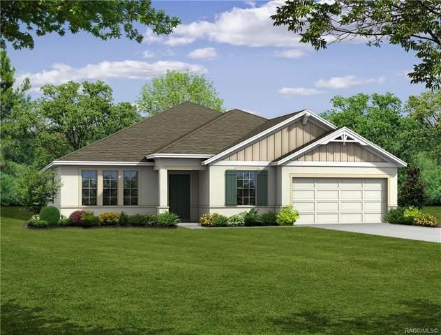15 Maidenbush Circle SW, Homosassa, FL 34446 (MLS #789788) :: Pristine Properties