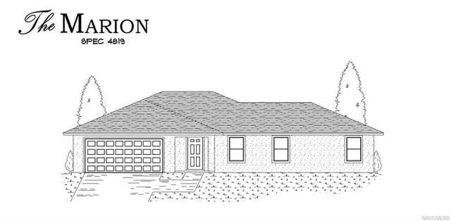8200 N Feather Avenue, Citrus Springs, FL 34433 (MLS #789818) :: Plantation Realty Inc.