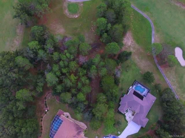 17 Woodlee Court S, Homosassa, FL 34446 (MLS #789822) :: Plantation Realty Inc.