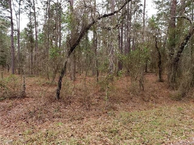 000 NW Summerfield Avenue, Dunnellon, FL 34434 (MLS #789829) :: Plantation Realty Inc.