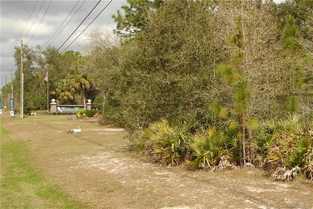 7179 W Merrivale Lane, Homosassa, FL 34446 (MLS #789831) :: Plantation Realty Inc.