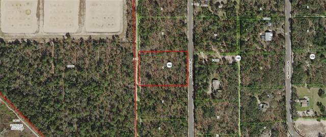 2402 N Stampede Drive, Beverly Hills, FL 34465 (MLS #789843) :: Plantation Realty Inc.