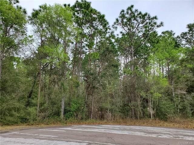 12001 S Gladiolus Point, Floral City, FL 34436 (MLS #789873) :: Plantation Realty Inc.