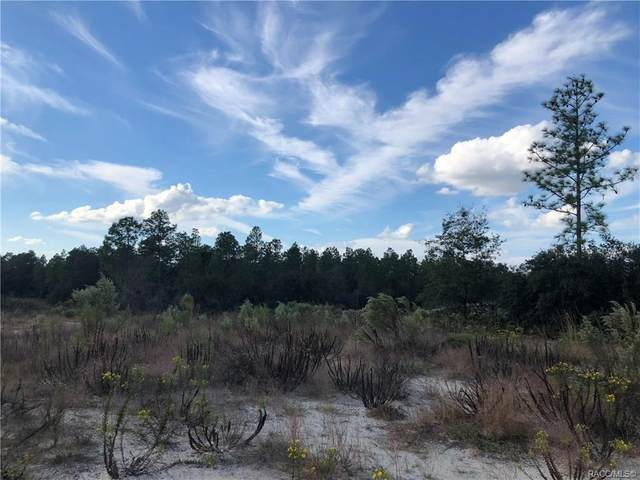 6700 W Nessi Street, Dunnellon, FL 34433 (MLS #789889) :: Plantation Realty Inc.