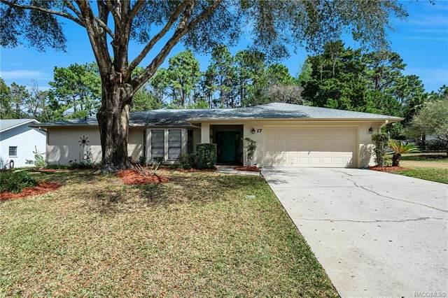17 Plum Court, Homosassa, FL 34446 (MLS #789904) :: Plantation Realty Inc.