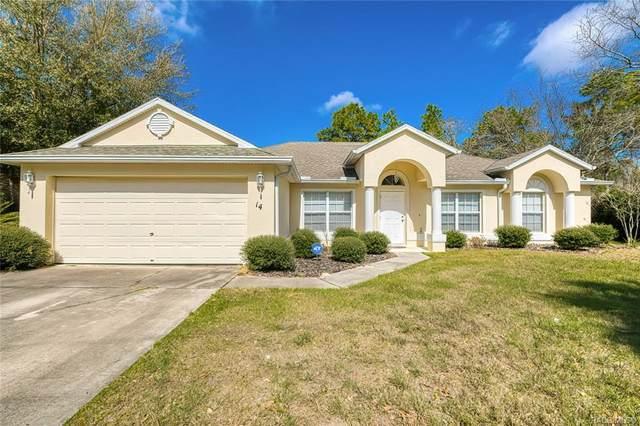 14 Milbark Court N, Homosassa, FL 34446 (MLS #789923) :: Plantation Realty Inc.